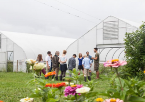 Grand Valley State University students working in front of two greenhouse structures. Flowers in the foreground.