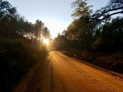 Holmes County Florida, view of a tree lines dirt road with the sun setting at the end of it.